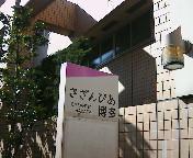 image/hazel-2006-03-04T19:29:51-1.jpg